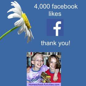 4,000 facebook likes