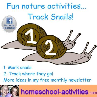 fun nature activities