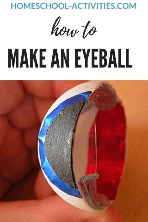 make an eyeball for human body activities