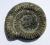 ammonite bullet point