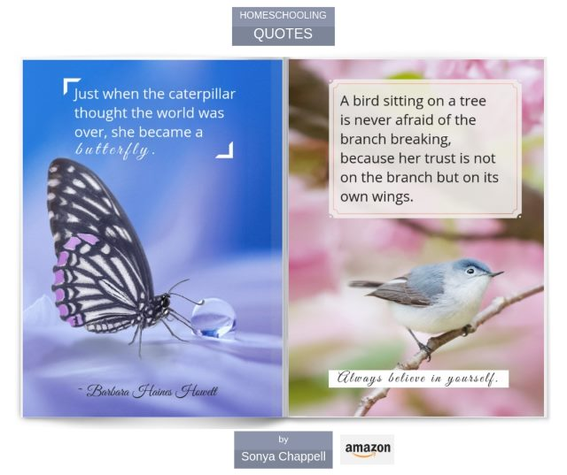 Homeschooling quotes gift book on Amazon