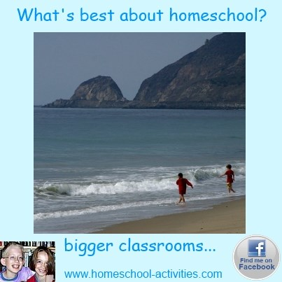 what's best about homeschooling?  Bigger classrooms.