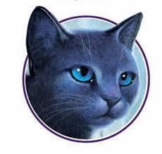 Bluestar Warrior Cats