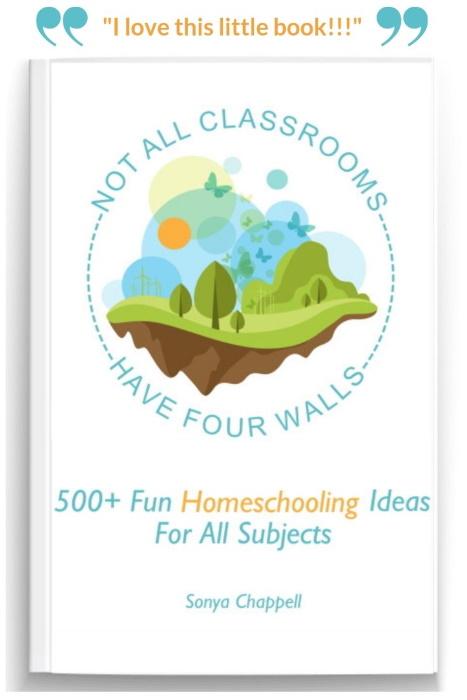 fun homeschooling ideas book