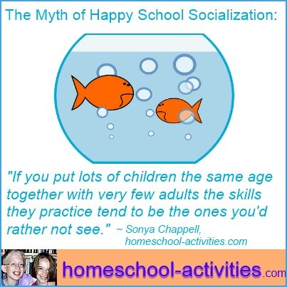 myths about school socialization