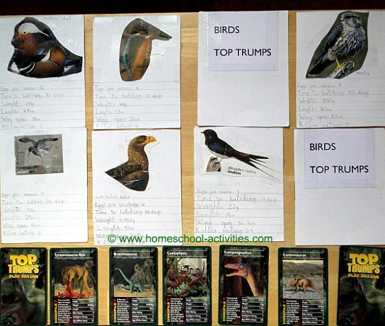 homemade Top Trumps
