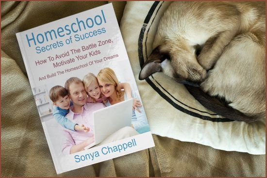 Homeschool Secrets of Success