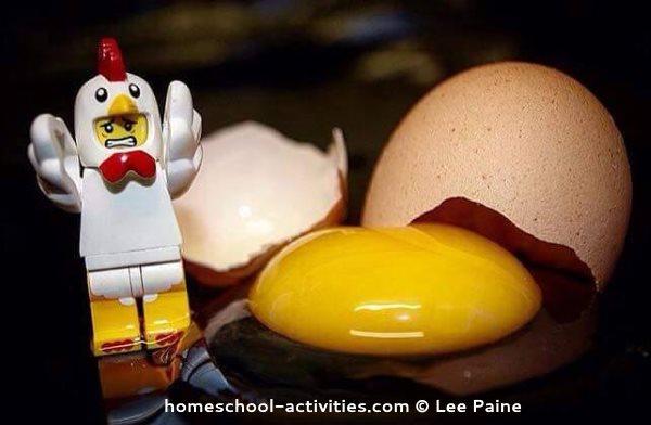 lego minifig chicken