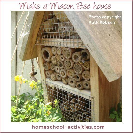make a mason bee house