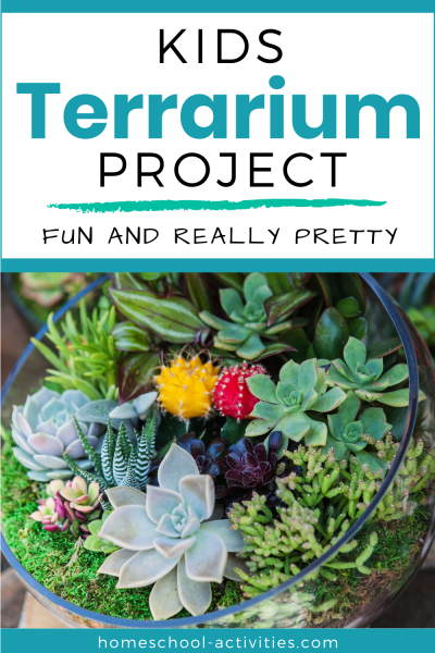 Make a terrarium with kids
