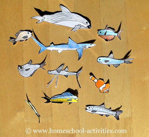 Free Ocean Diorama Pack: Kids Coloring Pages And Underwater