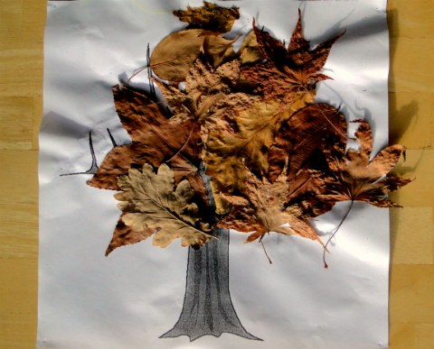 Homeschool Activities Has An Idea Of How To Use Fallen Leaves Make A Craft Project Tree Just Add Glue