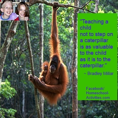 quote from bradley millar