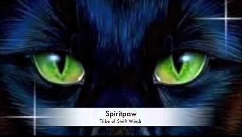 Spiritpaw Warriors