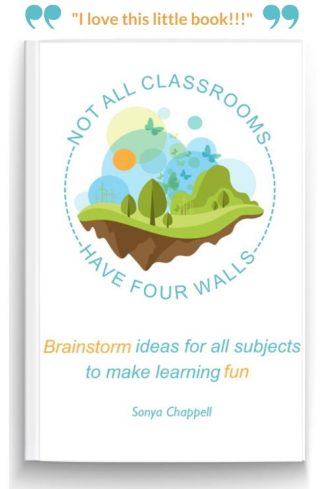 homeschooling ideas book