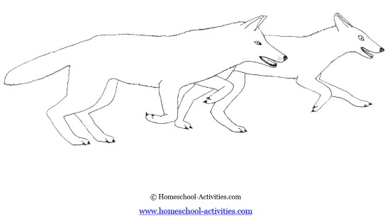 FREE PRINTABLE COLORING PAGES Kids Wolf Coloring Pages Page