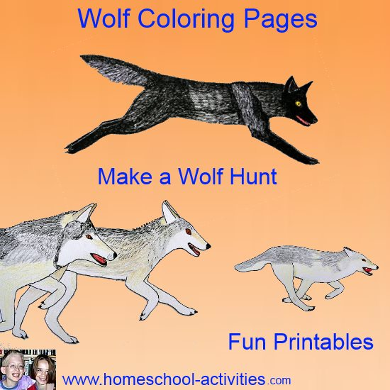 Hunting Wolf Coloring Pages