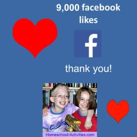 9000 Facebook Likes