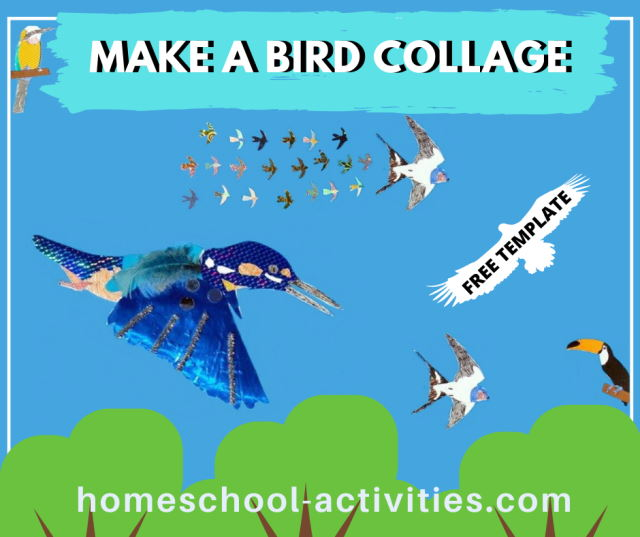 Make a bird collage
