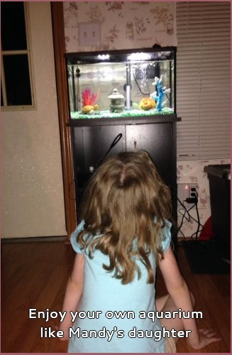 enjoy your own aquarium