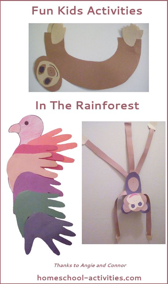 fun kids activities in the rainforest