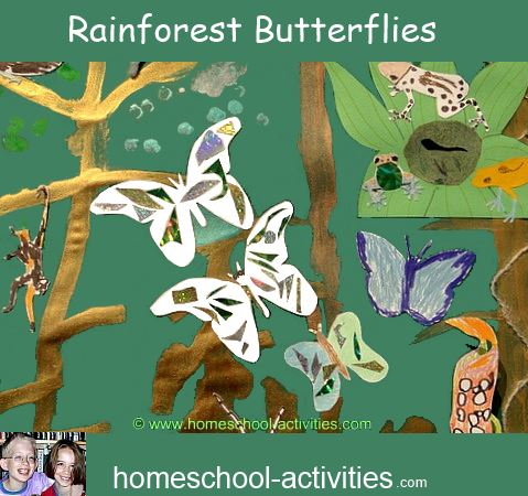 making butterflies to go in the rainforest