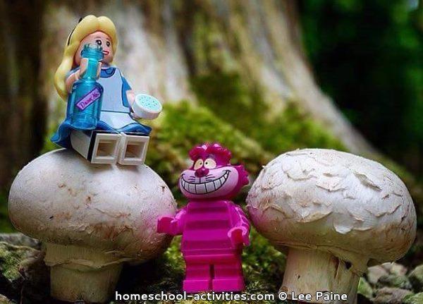 Alice in Wonderland lego fun photography