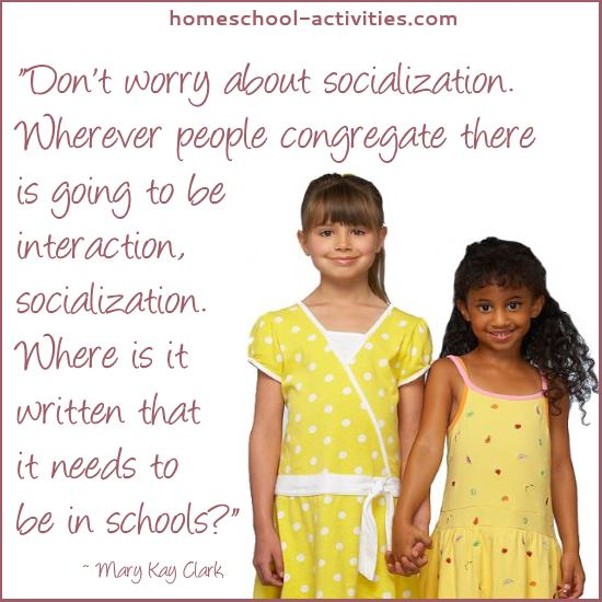 an argument against homeschooling will your child miss out  mary kay clark quote about socialization