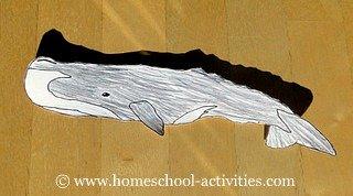 kids whale drawin