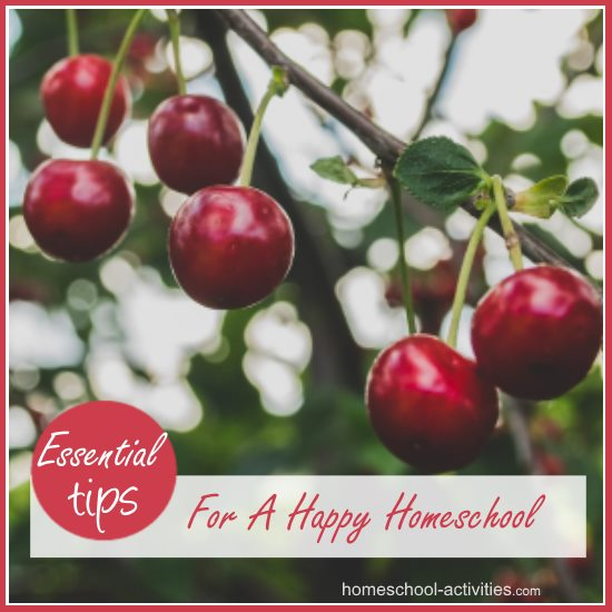 tips for a happy homeschool